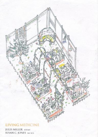 Tatton Garden Plan - hand drawn garden design