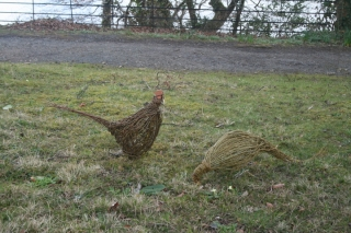 Willow sculpture of pheasants by Purple Sue